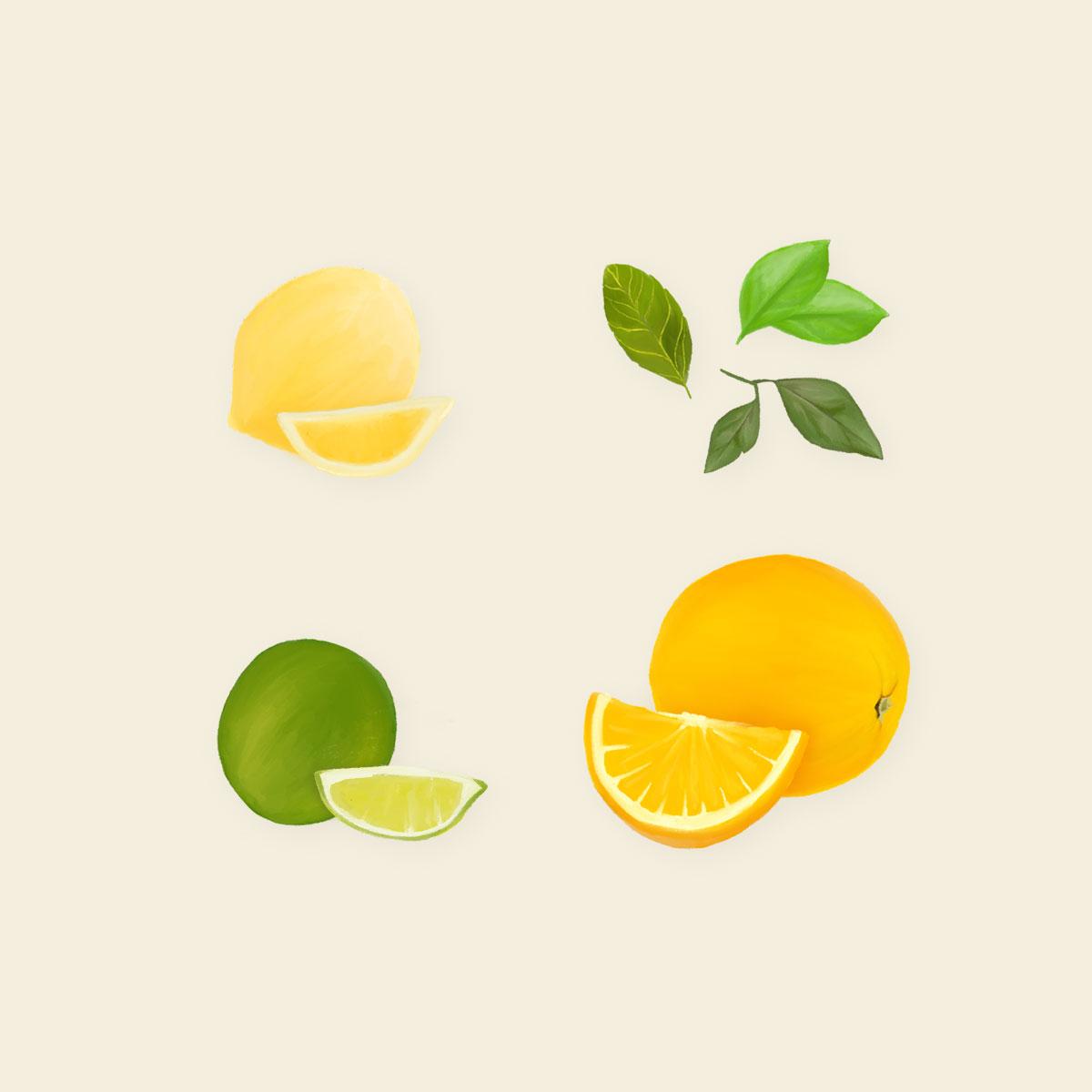 Squeeze the Day - alle Zitrusfrüchte einzeln!